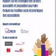 Rapport- Stratégies d'évolution des modèles socio-économiques des associations
